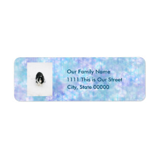 Stars and Snowflakes Photo Template Return Address Return Address Label