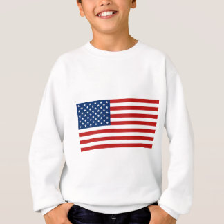 Stars and Stripes - flag of the USA Sweatshirt