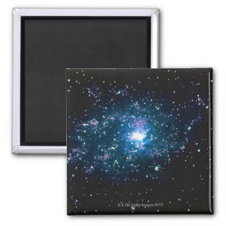 Stars in Space Refrigerator Magnet