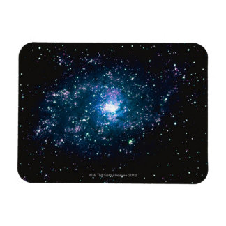 Stars in Space Vinyl Magnets