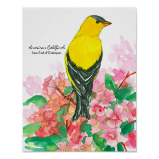 State Bird of Washington American Goldfinch Yellow Poster