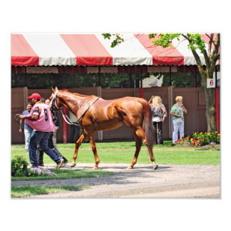 State Flag in the Saratoga Paddock Photographic Print
