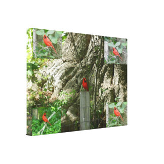 STATE OF OHIO BIRD RED CARDINAL canvas