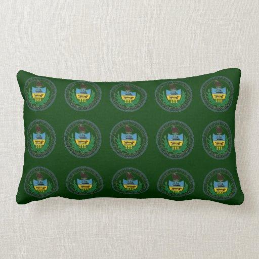 State of pennsylvania pillow