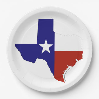 State of Texas paper plates