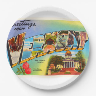 State of Vermont VT Old Vintage Travel Souvenir 9 Inch Paper Plate