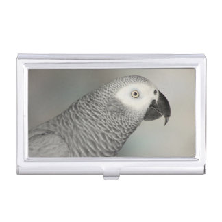 Stately African Grey Parrot Case For Business Cards