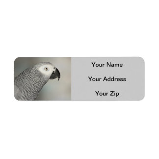 Stately African Grey Parrot Return Address Label