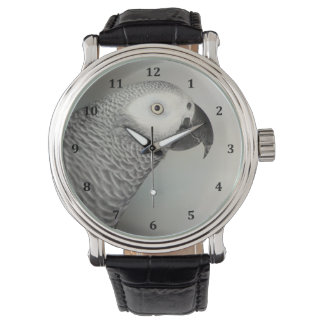 Stately African Grey Parrot Wrist Watch