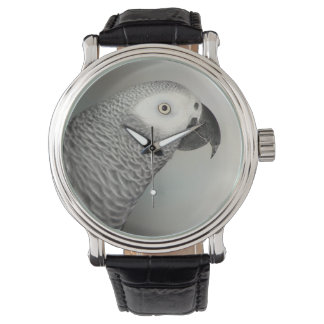 Stately African Grey Parrot Wrist Watches
