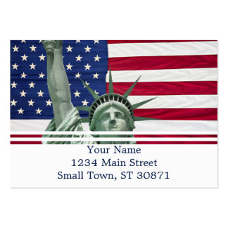 Statue of Liberty and American Flag Pack Of Chubby Business Cards