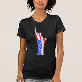 statue of liberty, stars stripes, red white blue shirt