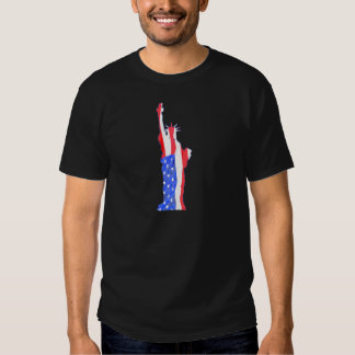 Statue of Liberty, stars stripes, red white blue T-shirts