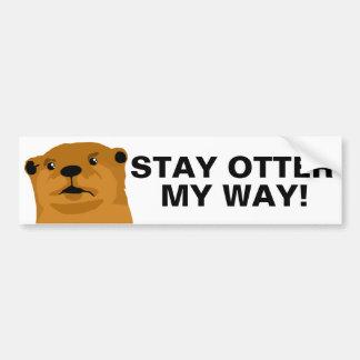 Stay Otter My Way Bumper Sticker