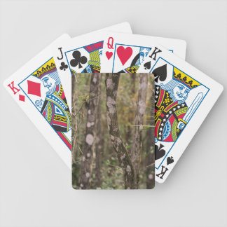 Steadfast Legend Bicycle Playing Cards