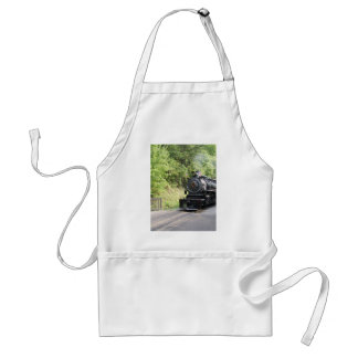 steam engine aprons