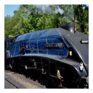 Steam Locomotive 60017