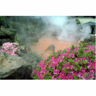 Steam pool in Bephu, Japan Standing Photo Sculpture