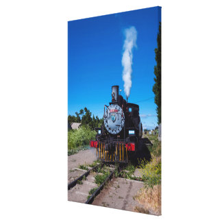 Steam Train On La Trochita Canvas Print