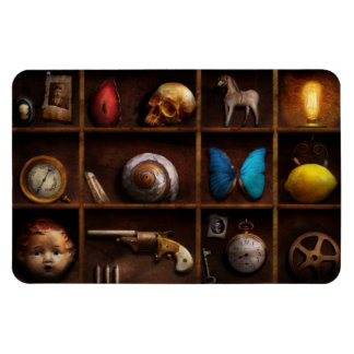 Steampunk - A box of curiosities Rectangle Magnets
