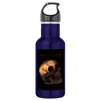 Steampunk skeleton skull machinery cogs rust 532 ml water bottle