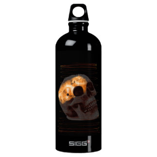 Steampunk skeleton skull machinery cogs rust water bottle