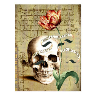 Steampunk Skull Floral Writing Postcard