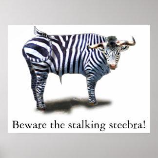 Steebra Poster