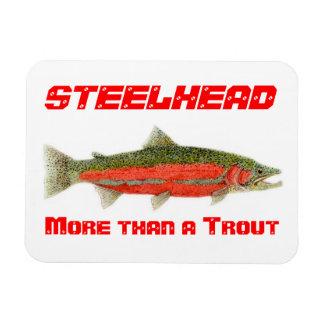 Steelhead- More than a Trout Magnet