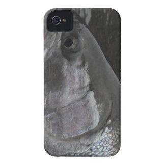 Steelhead Trout BlackBerry Case