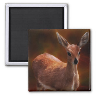 Steenbok deer are so tiny square magnet
