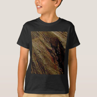steep colored canyon T-Shirt