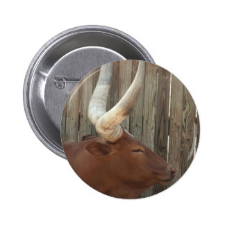 Steer With Big Horns Pinback Button