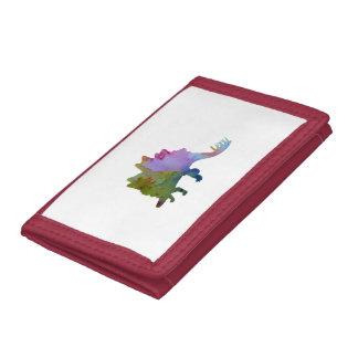 Stegosaurus Tri-fold Wallets