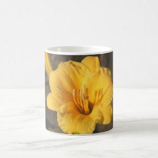 Stella de Oro with Dew Coffee Mug