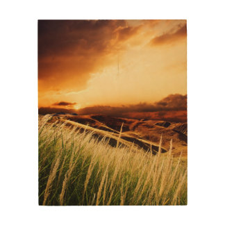 stems of rush at the sunset wood prints