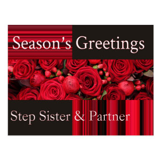 Step sister & Partner  Merry Christmas card Postcard