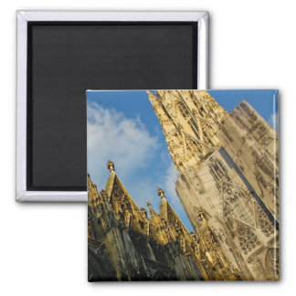 Stephansdom Magnet