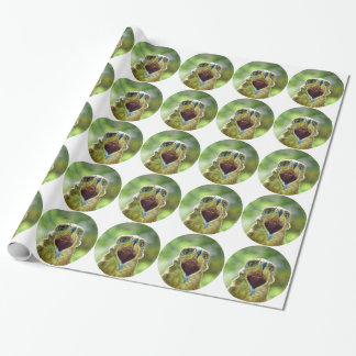Steppe Eagle Head 004 01rd, screaming Wrapping Paper