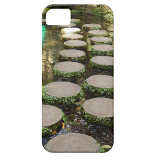 Stepping Stones iPhone SE+5/5S Case