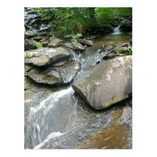 Stepping Stones Postcard