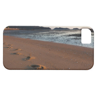 Steps in the sands at sunrise iPhone 5 case