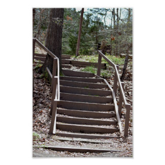 Steps in the Woods Poster