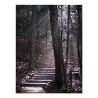 Steps to Enlightenment Poster