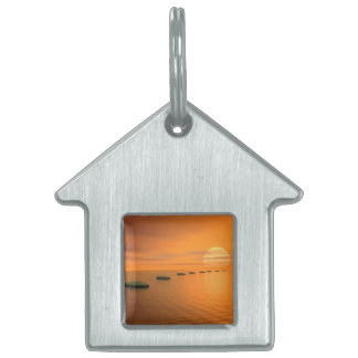 Steps to the sun - 3D render Pet Name Tag