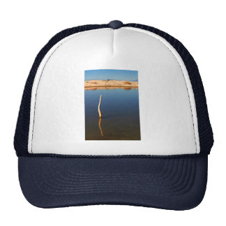 Stick In The Water Mesh Hat