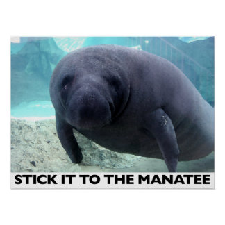 STICK IT TO THE MANATEE poster