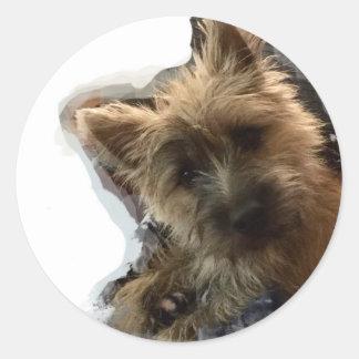 Sticker Cairn Puppy