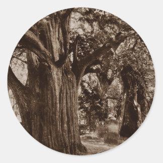 Sticker Genealogy Churchyard Old Yew Tree Stones