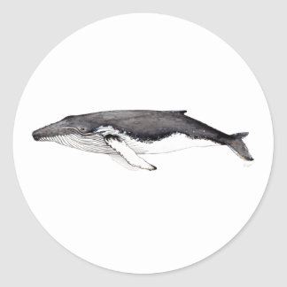 Sticker hunchbacked whale